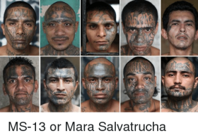 ms-13-or-mara-salvatrucha-19770428