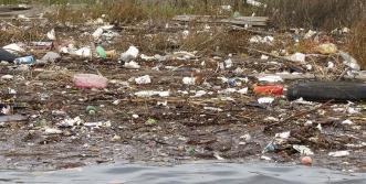 Litter all over California